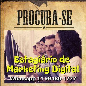 Read more about the article Como contratar estagiário(a) de marketing digital