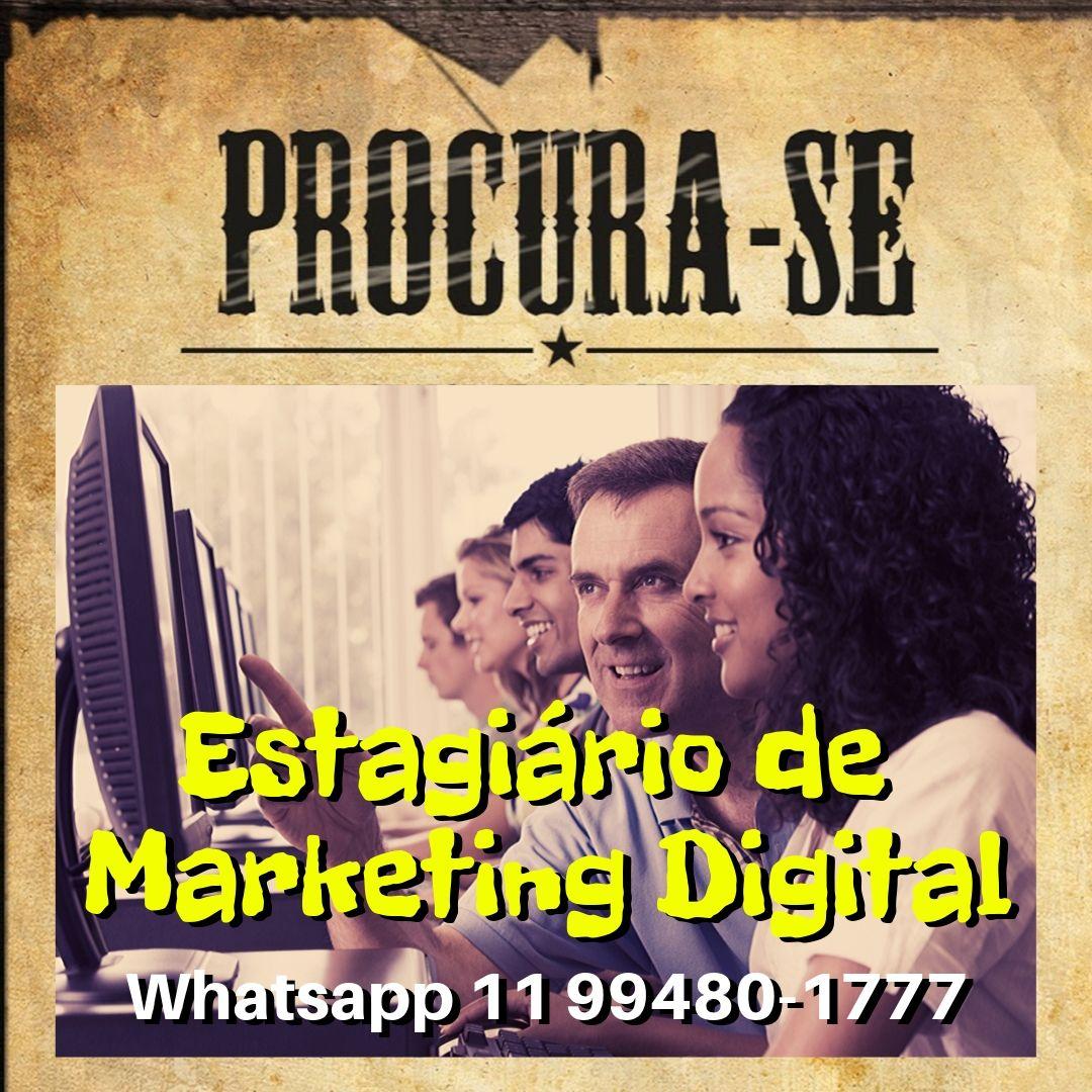 You are currently viewing Como contratar estagiário(a) de marketing digital